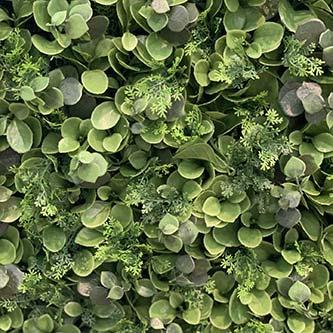 Gazon synthétique Ficus